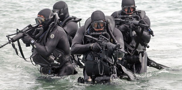 A lot can be learned from Seal training