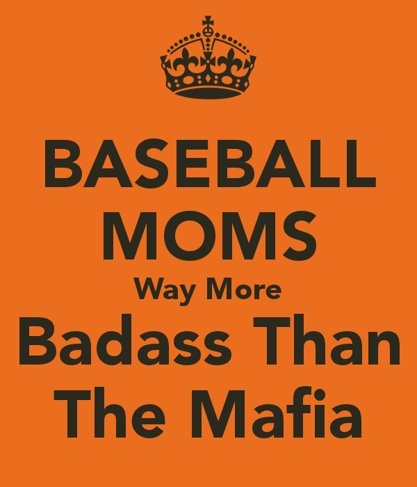 Don't mess with baseball moms!